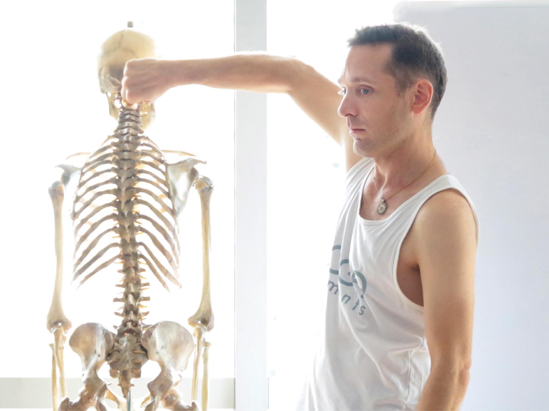 Adrian-cox解剖学担当